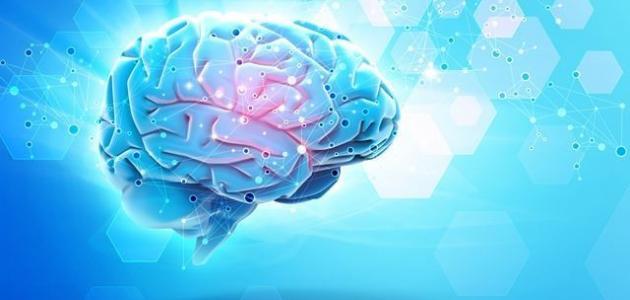 كيف تقوي عقلك