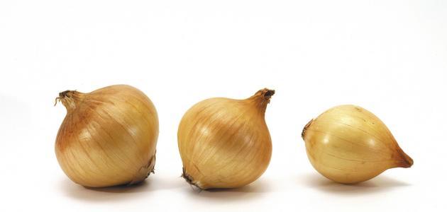 ما هو فوائد البصل