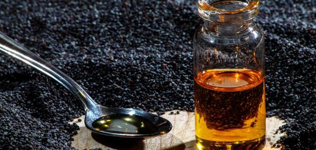 فوائد عسل النحل وحبة البركة