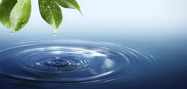 فوائد الماء في الطبيعة