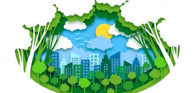ما هي البيئة