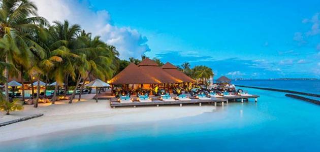 كم يبلغ عدد جزر المالديف