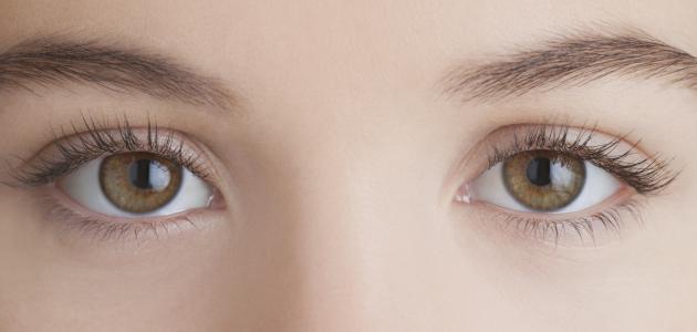 علاج حساسية وجفاف العين