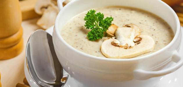 فوائد حساء الكريمة بالدجاج