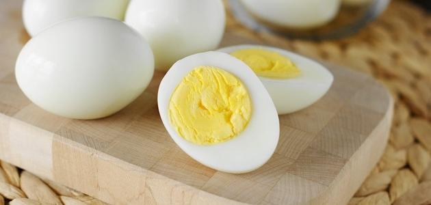 فوائد تناول البيض يوميا !!