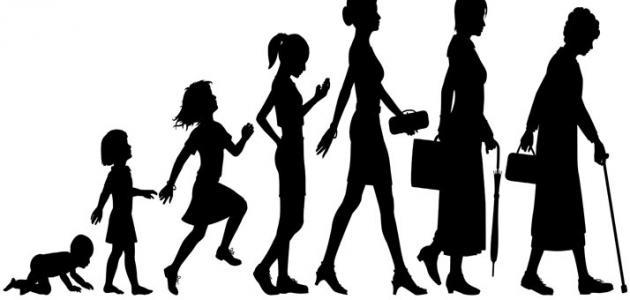 مراحل نمو الإنسان في علم النفس موضوع