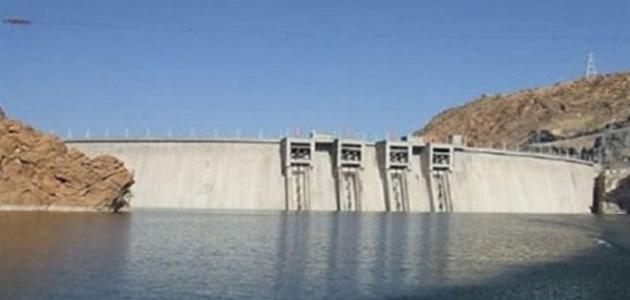 ما هي دول حوض النيل