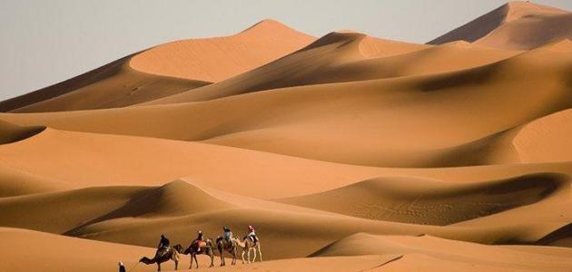 ما هي اكبر صحراء في العالم