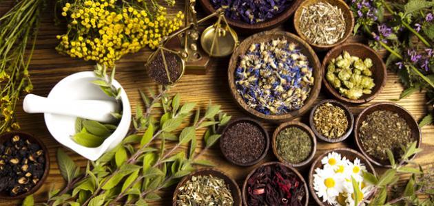فوائد طب الأعشاب