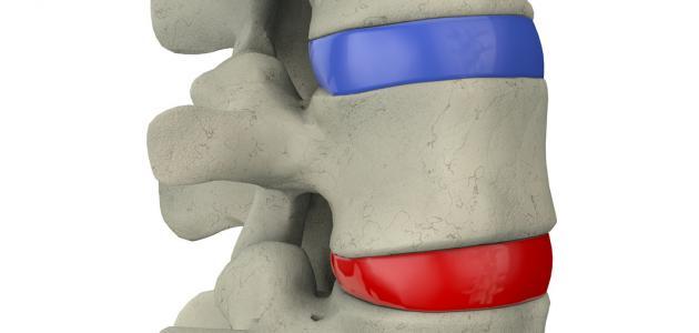 ما هو نخاع العظم