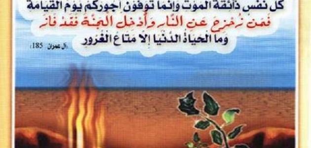 ما هو نعيم القبر وعذابه