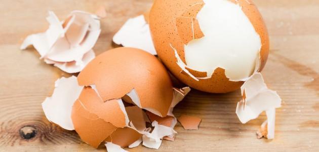 فوائد قشر البيض للإنسان