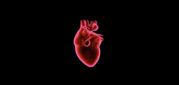 ما هي أسباب تضخم القلب