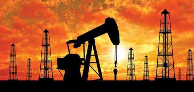 كيف يتكون البترول في باطن الأرض