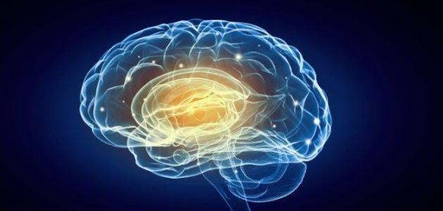 علامات تأخر النمو العقلي عند الأطفال