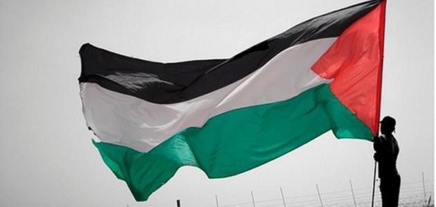ما هي حدود فلسطين