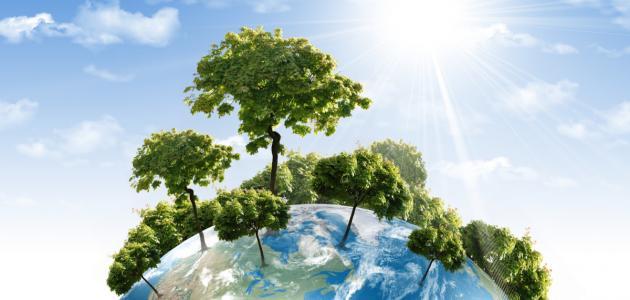 عناصر البيئة ومكوناتها