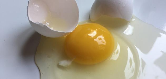 فوائد بياض البيض النيء