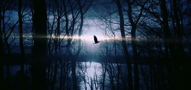 قدرة الله وعظمته في خلق الليل والنهار