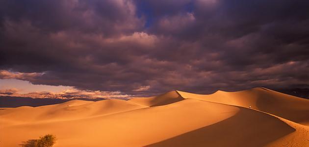 ما هي الصحراء
