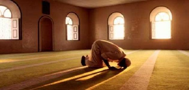 قيام الليل في رمضان بعد التراويح