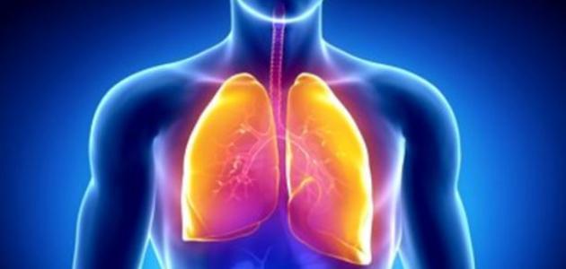 المحافظة على صحة الجهاز التنفسي