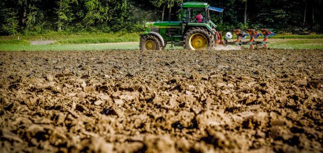 ما هي الزراعة