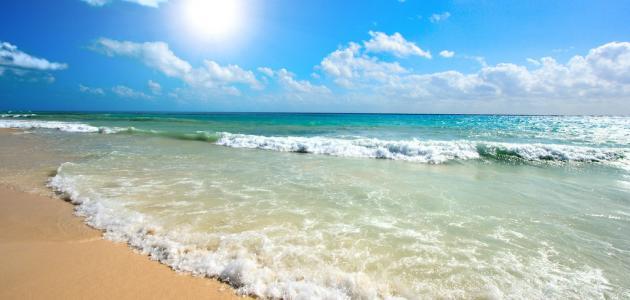 المحافظة على نظافة الشواطئ