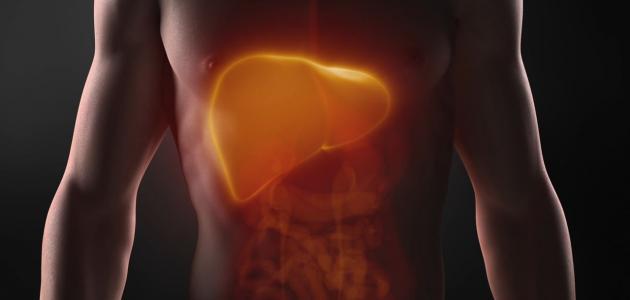 ما هي أمراض الكبد