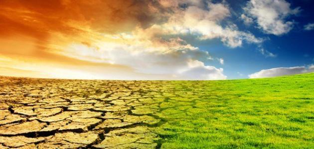 تأثير ارتفاع درجة حرارة كوكب الأرض