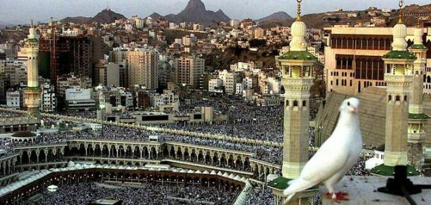 ما نتائج فتح مكة