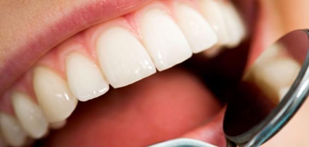 من ماذا تتكون الأسنان - موضوع