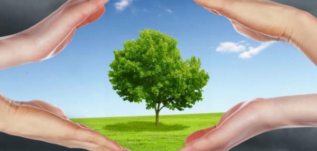 الوقاية من تلوث البيئة