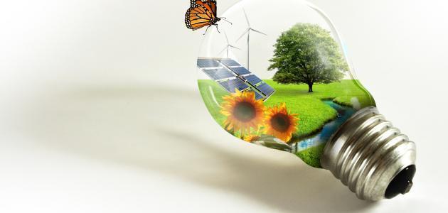 من وسائل المحافظة على البيئة