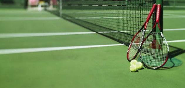كم عدد لاعبي كرة المضرب