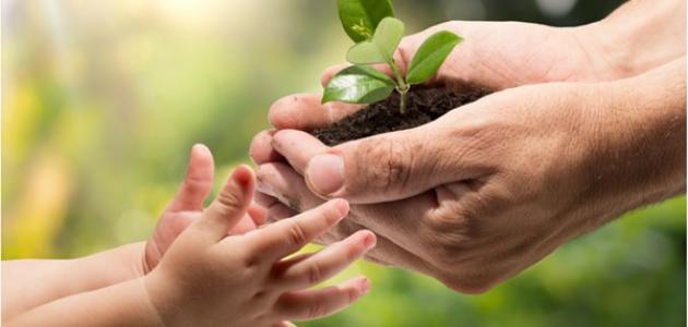 تعبير عن كيفية المحافظة على الأرض