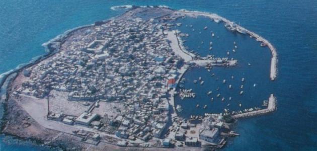 كم مساحة جزيرة مصيرة