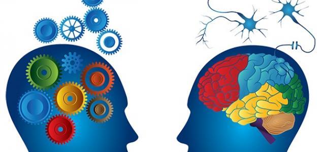 ما هي البرمجة العصبية