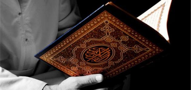 من مؤلف كتاب تفسير القرآن الكريم