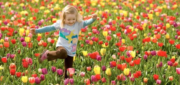 bc05f6249 معلومات عن فصل الربيع - موضوع