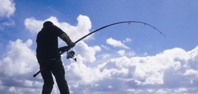 الصيد البحري في الإمارات