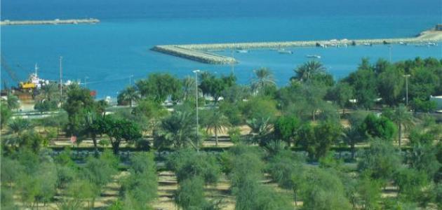 مدينة المرفأ في الإمارات