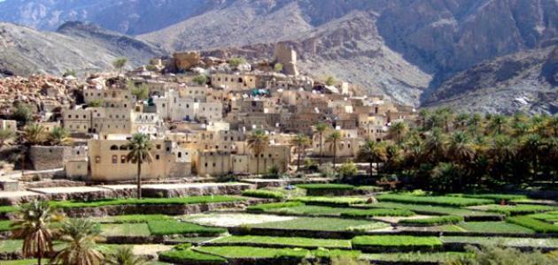 معلومات عامة عن تاريخ سلطنة عمان
