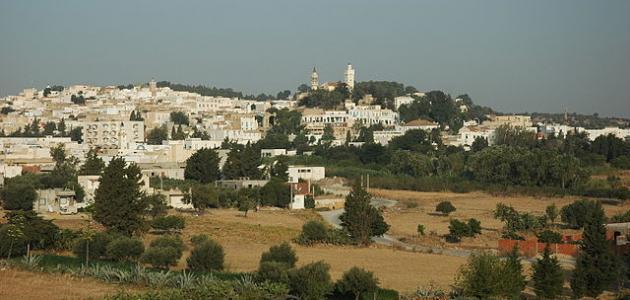 مدينة زغوان في تونس