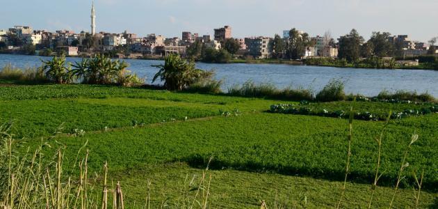 مدينة بنها المصرية