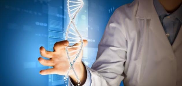 الصفات الوراثية للجنين