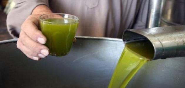 مراحل استخراج زيت الزيتون