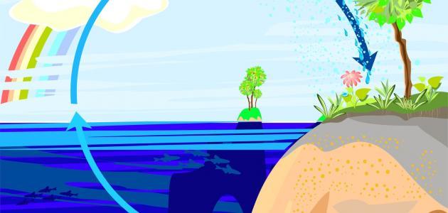 ما هي دورة الماء