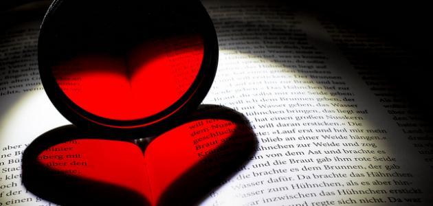 اجمل كلمات الحب