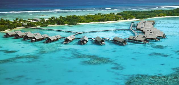 جزيرة مالي في المالديف
